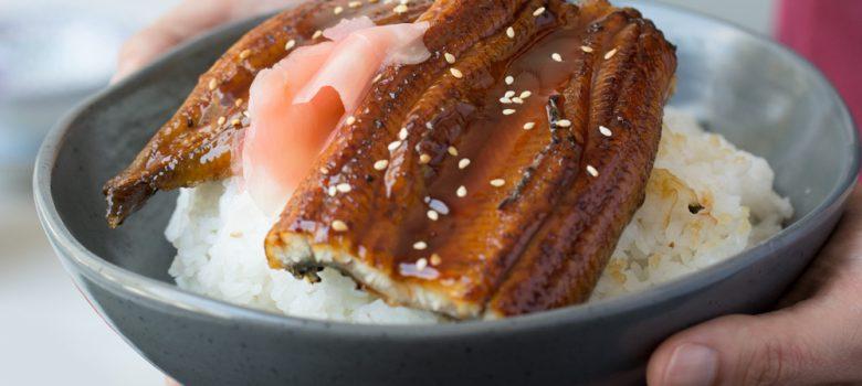 Grilled Eel on Rice (Unagi Donburi)